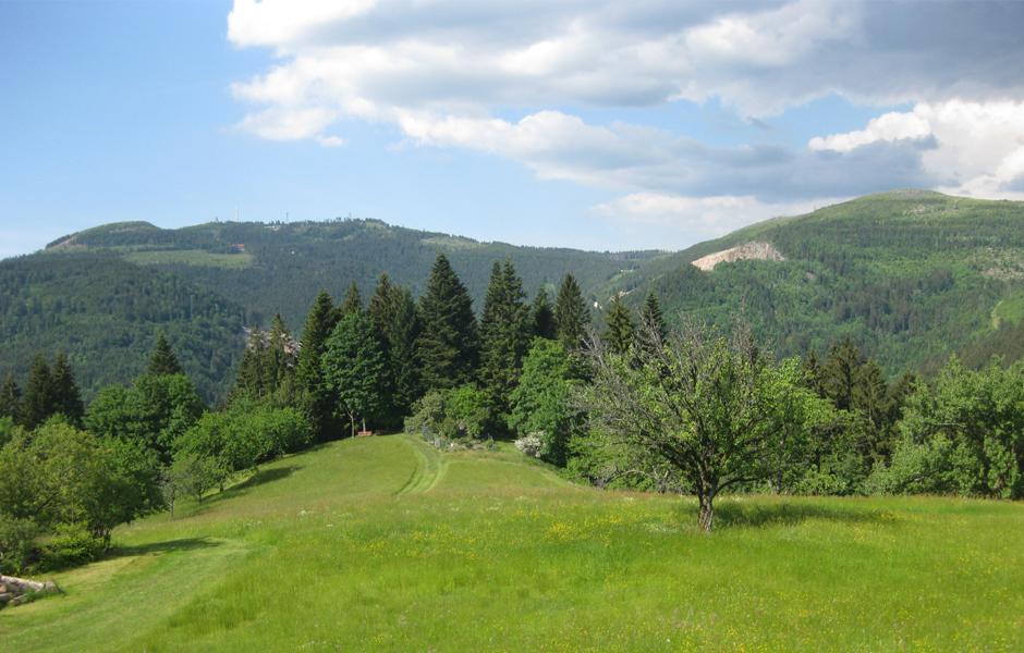 Sport im Schwarzwald