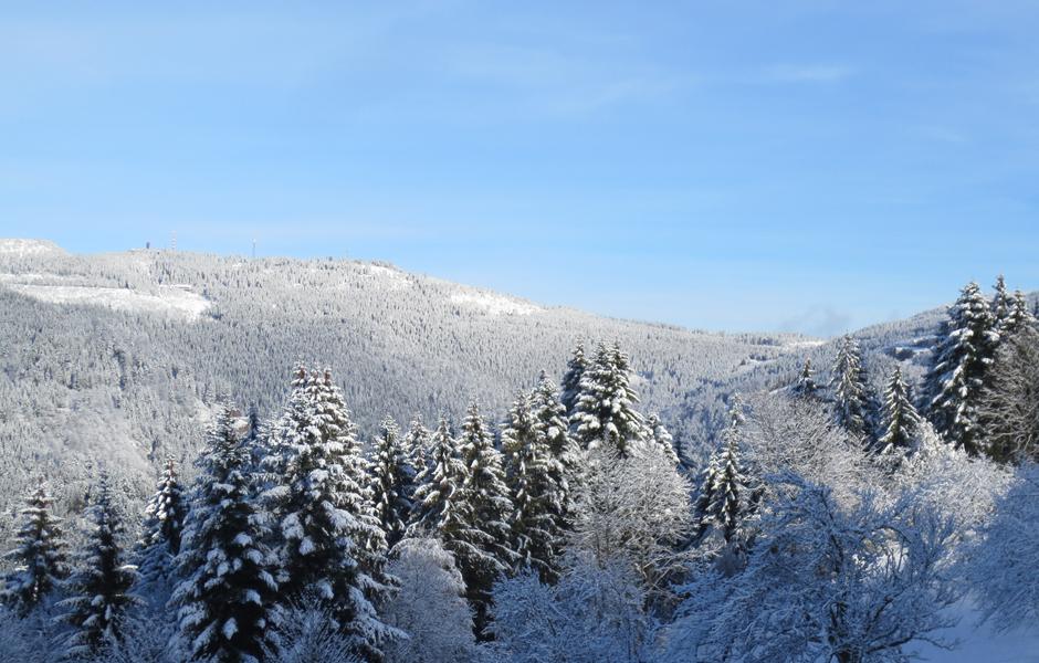Schneewandern im Schwarzwald
