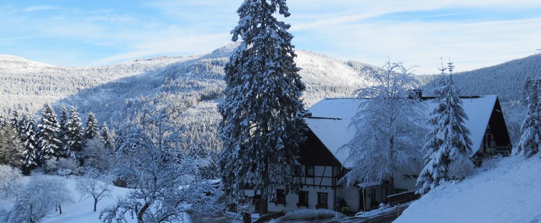 schwarzwald_winterurlaub